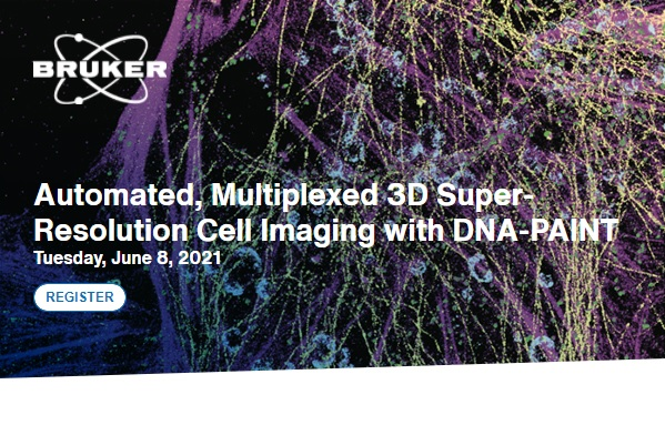 Multiplexed 3D Super-Resolution Cell Imaging with DNA-PAINT